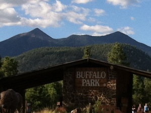 Short Running Trail Buffalo Park, Flagstaff