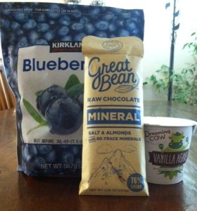 yogurt blueberry 2