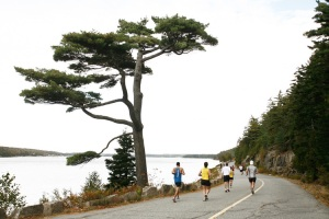 Image from mountdesertislandmarathon.com