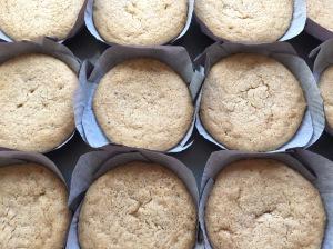peanut butter cupcakes 17