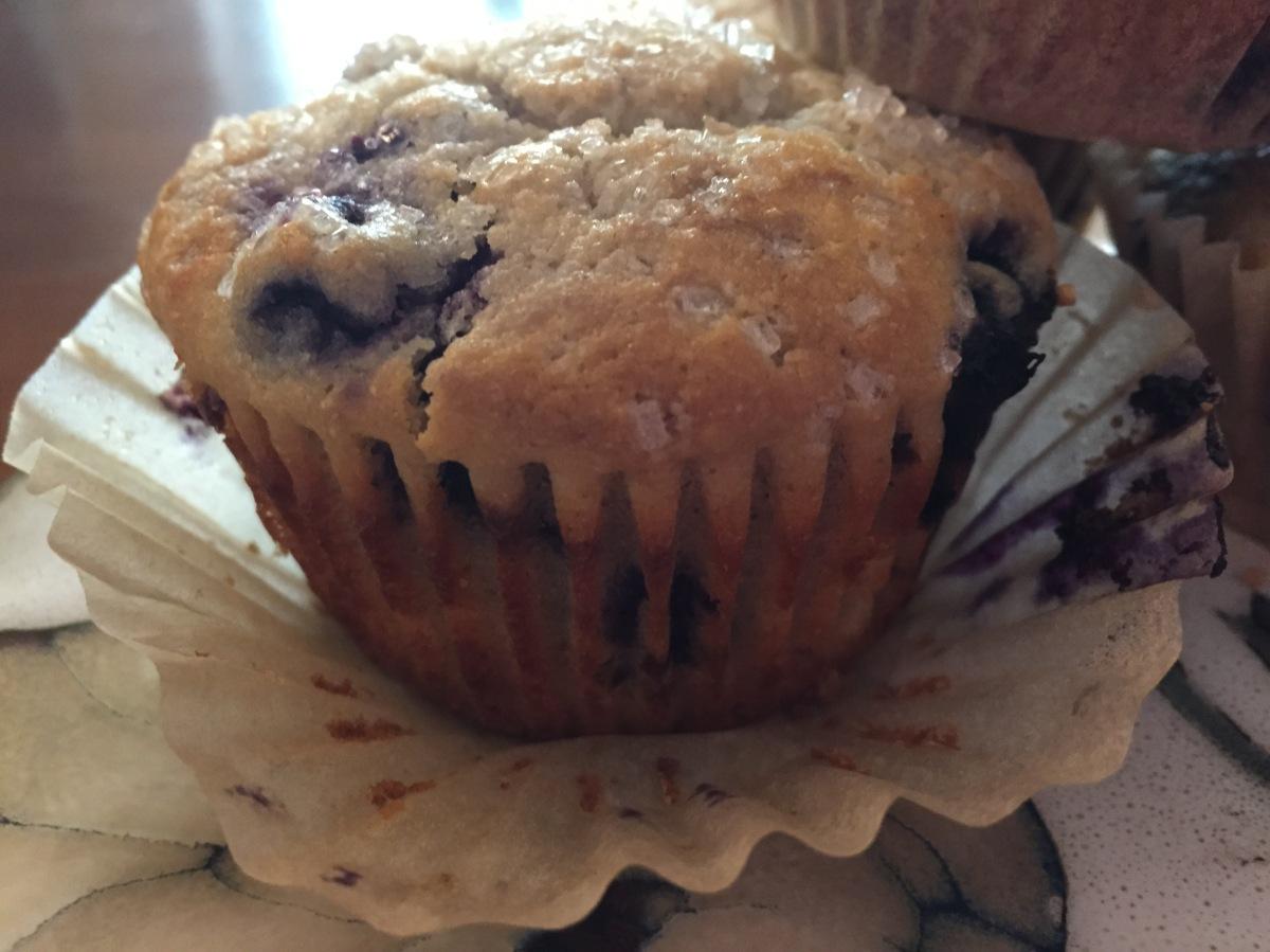Gluten-Free, Grain-Free Sourdough Blueberry Muffins